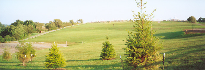 Woodstock Site